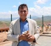 HAYVAN SEVGİSİ - Sivas'ta Hayvanlara 5 Yıldızlı Otel