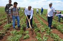 KARACADAĞ - Atik Açıklaması '25 Haziran'da Aydınlık Bir Türkiye'ye Uyanacağız'