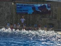 ÖZLEM ÇERÇIOĞLU - Büyükşehrin Yüzme Kursları Devam Ediyor