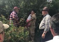 Elazığ'da Kayıp Olan Küçük Kızı, Jandarma Ekipleri Buldu