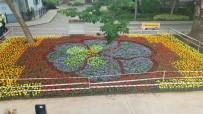 ESKIHISAR - Eskihisar Rengarenk Çiçeklerle Donatıldı