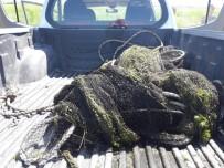 YÜZÜNCÜ YıL ÜNIVERSITESI - Jandarma, Bin 200 Kilo Canlı Balığı Göle Bıraktı