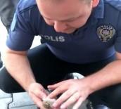 KALP MASAJI - Polis Memurundan Kuşa Kalp Masajı