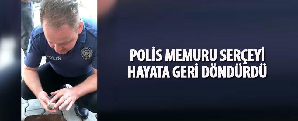 Polis memurundan serçeye, 'hayata döndüren dokunuş'