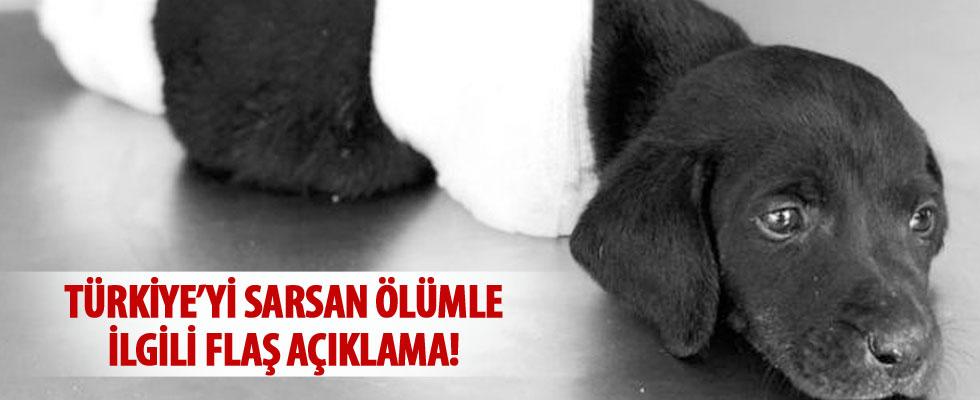 Türkiye'yi sarsan ölüm ile ilgili flaş açıklama!