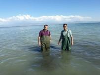 MUHAMMET DEMİR - Van'da 500 Kilogram Kaçak Avlanmış Balık Ele Geçirildi