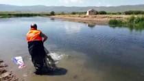 İNCİ KEFALİ - Van'da Kaçak Avcılıkla Mücadele