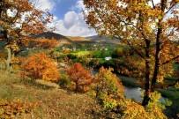 ENVER YıLMAZ - Argan Yaylası Turizme Açılıyor