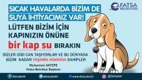 Başkan Aktepe'den Sokak Hayvanları İçin 'Bir Kap Su' Çağrısı