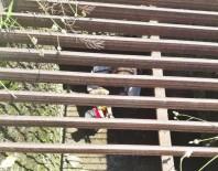 Düştüğü Su Kanalında Mahsur Kalan Yavru Köpeği İtfaiye Kurtardı