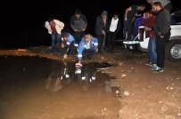 Gümüşhane'de Göletlere 50 Bin Sazan Yavrusu Bırakıldı