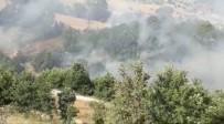 Kahramanmaraş'ta Yangın