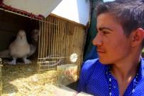 Kuşu Kurtarmak İsterken Kolların Kaybeden Ramazan'dan İnsanlık Dersi