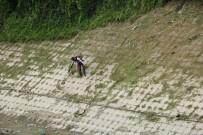 Hatay'ın Akrobatik İşçileri