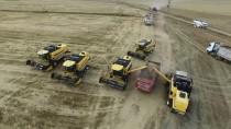 'Yağışlar Buğday Gelişimini Olumsuz Etkiledi'