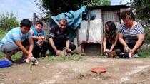 KÖPEK YAVRUSU - Yağmurda Islanan Köpek Yavrularını Sokakta Bırakmadılar