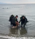 Bursa'da Serinlemek İçin Denize Giren Genç Boğuldu