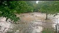 YEŞILÇAY - Dolu Yağışı Tarım Arazilerine Zarar Verdi