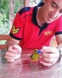 İTFAİYECİLER - İtfaiye Eri Susayan Kuşa Şişe Kapağından Su İçirdi