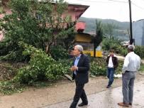 HASAR TESPİT - Osmaneli'de Dolu Büyük Zarara Yol Açtı