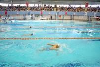 ŞEHITKAMIL BELEDIYESI - Alleben Yüzme Havuzunda Yaz Spor Okulu Coşkusu