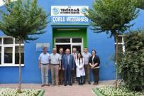 KADİR ALBAYRAK - Başkan Albayrak Çorlu'da Büyükşehir Belediyesi Şube Müdürlüklerini Ziyaret Etti