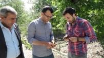 HASAR TESPİT - Domaniç'te Zarar Tespit Çalışmaları