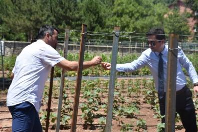 İlçede Tarımın Büyümesi İçin Kaymakamlık Örnek Bahçe Yaptı