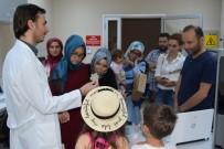 İDRİS ŞAHİN - Düzce Üniversitesi Açık Kampüs Uygulaması İle Düzcelileri Ağırlamaya Devam Ediyor