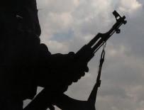HAKKARI VALILIĞI - Gri listedeki o terörist öldürüldü