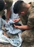 YAVRU KÖPEKLER - Boğulmak Üzere Olan Köpek Yavrularını Mehmetçik Kurtardı