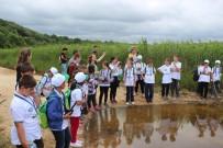 ZİYA GÖKALP - Kırklareli'de Öğrenciler İçin 'Lider Çocuk Tarım Kampı'