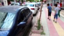 Siirt'te Otomobilden Çıkan Yılan Korkuya Neden Oldu