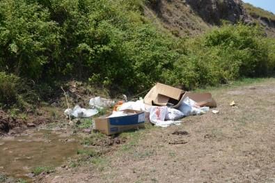 Başkan Ergül Açıklaması 'Çukurbağı'na Çöp Dökenlere Gerekli Cezayı Keseceğiz'