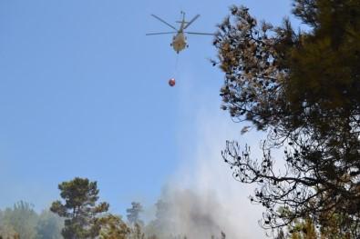 Bozyazı'da Orman Yangını