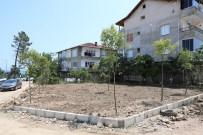 Fatsa Belediyesinden Yeşillendirme Çalışmaları