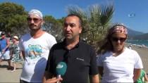 DENİZ KAPLUMBAĞALARI - Fethiye'de Yavru Caretta Carettaların Denize Yolculuğu Başladı