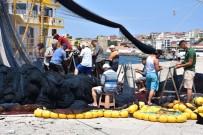 ORKİNOS - Karadenizli Balıkçılar Orkinos Avından Döndü