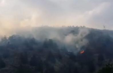 KKTC'deki Yangın Türkiye'nin Yardımı İle Kontrol Altına Alındı