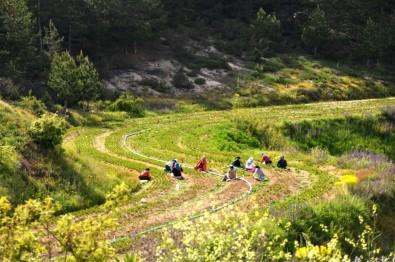 Kütahya'ya Yeni Bir Orman Fidanlığı Daha