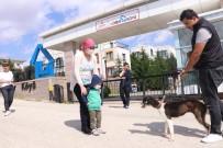 VEFA SALMAN - Lösemili Çocuklar Köpeklerine Yeniden Kavuştu