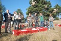ÖMER TORAMAN - Tokat'ta Bin 500 Kınalı Keklik Doğaya Salındı