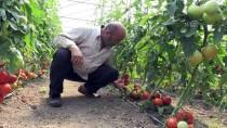 MUSTAFA KALAYCI - Toprak Ve Suya 'Verimli' Dokunuş