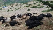 Kahramanmaraş'ta Yıldırım Düştü Açıklaması 32 Keçi Telef Oldu