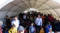 CİLVEGÖZÜ SINIR KAPISI - Bayram İçin Ülkesine Giden Suriyelilerin Sayısı...