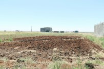 TARIM SİGORTASI - Çiftçiyi Önce Kuraklık Sonra Yağmur Vurdu