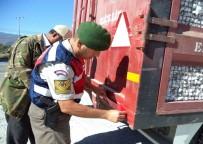 GÜLLÜBAHÇE - Söke Jandarma'dan Tarım Araçlarına Güvenlik Çağrısı