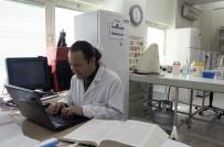 ULUDAĞ ÜNIVERSITESI REKTÖRÜ - Bilimsel Araştırmaya Destek 53 Milyon TL'ye Ulaştı