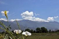 MUNZUR - Erzincan'a Haziranda Kar Yağdı