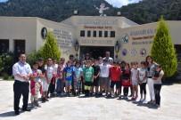 GÖKOVA - Muğla'da Öğrenciler Doğayı Tanıyor